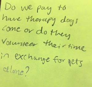 Do we pay to have therapy dogs come or do they volunteer their time in exchange for pets alone?