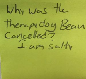 Why was the therapy dog Bean cancelled? I am Salty