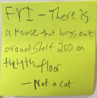FYI - There is a mouse that hangs out around shelf 260 on the 4th floor --Not a cat