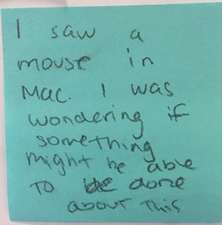 I saw a mouse in Mac. I was wondering if something might be able to be done about this.