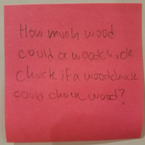 How much wood could a woodchuck… – The Answer Wall