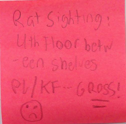 Rat Sighting: 4th Floor between shelves PL/KF-GROSS! (sad face)