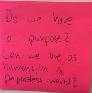 Do we have a purpose? Can we live, as humans, in a purposeless world?