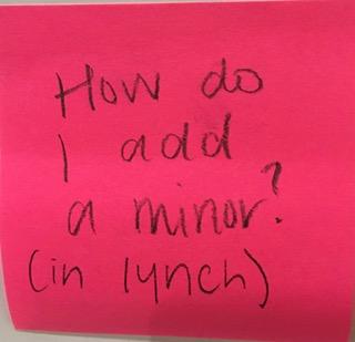 How do I add a minor? (in lynch)
