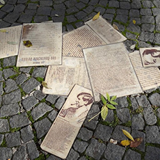Scattered literature across a stone path