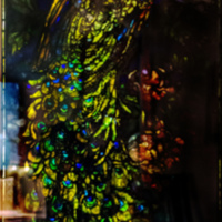 1892-1908_PeacockWindow.jpg