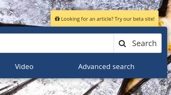 """Screenshot detail of BC Libraries home-page showing yellow text box link: """"Looking for an article? Try our beta site!"""" above the main search bar."""