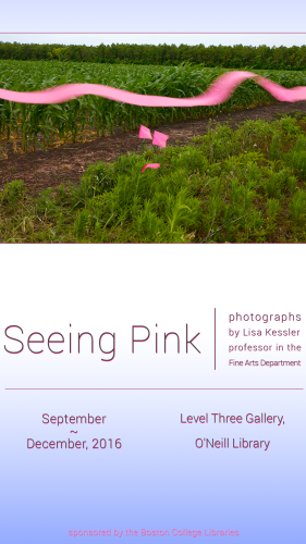Seeing Pink   exhibit poster