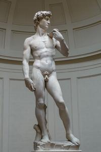 'David'_by_Michelangelo_JBU0001.jpeg
